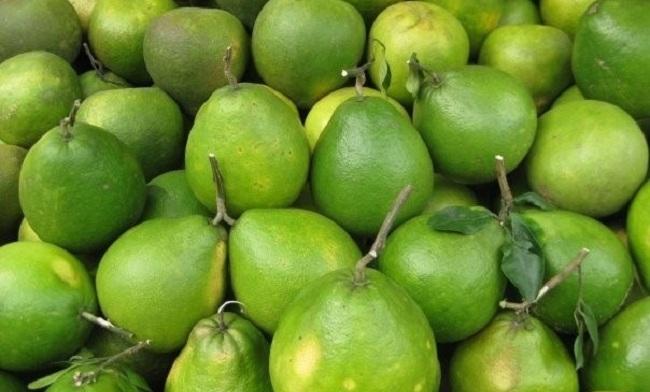 6 loại quả thuần Việt, không nhập khẩu từ Trung Quốc. 4