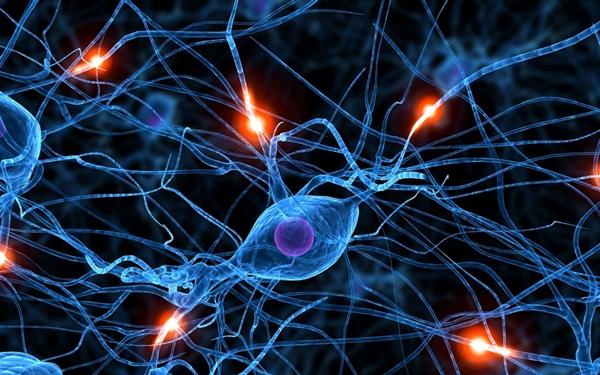 brain_synapse_neurons_1600x120_2560x1600_wallpapername.com
