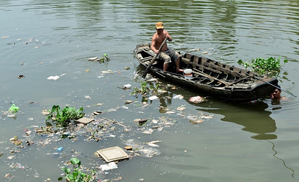 Cá mắc lại dọc phao ngăn rác vào rạch Xuyên Tâm, quận Bình Thạnh.