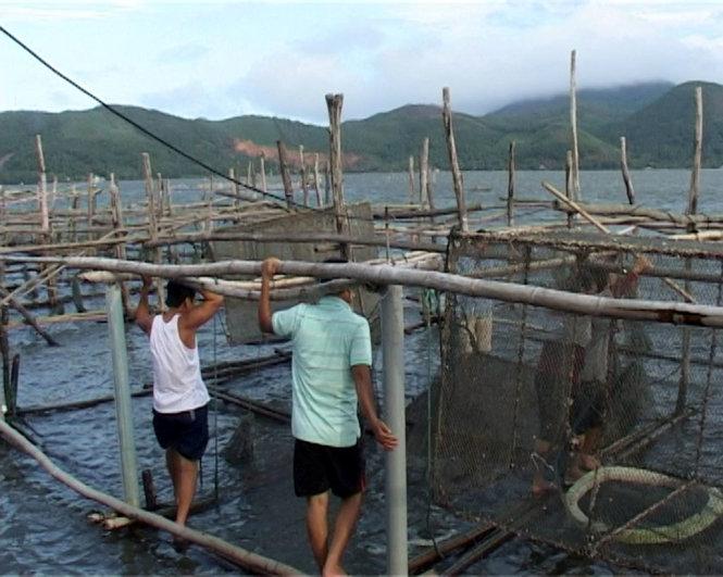 Khu vực nuôi cá lồng trên đầm Cầu Hai của người dân xã Vinh Hiền đang xuất hiện cá chết. (Ảnh: Internet)