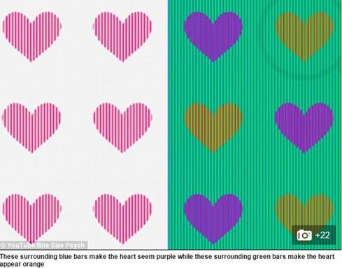 Hình ảnh giải câu đố từ Bite Size Psych. (Ảnh chụp màn hình Dailymail).