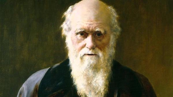Cây Sự Sống của Darwin không diễn tả đúng thực tế.