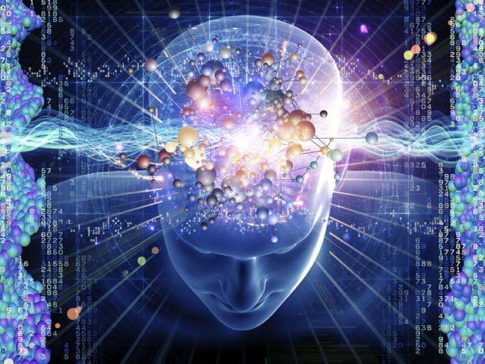 Ý thức - Sự khác biệt giữa sinh vật và máy móc.1