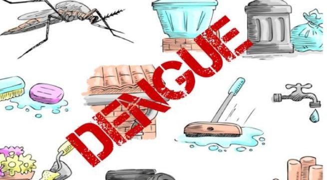 dengue-pic-1443606016397
