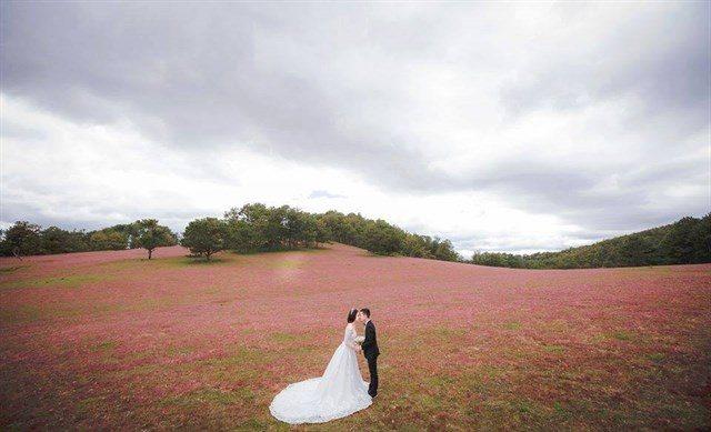 Những điểm chụp ảnh với cảnh đẹp như mơ ở miền Nam.2