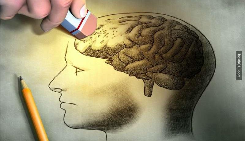 Trí tuệ, khả năng ghi nhớsẽ bị giảm sút nếu não bộ không được sử dụng thường xuyên. (Ảnh: Prezi)