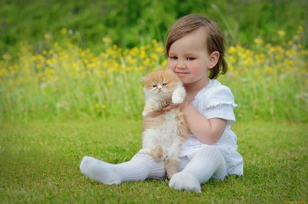 Bộ sưu tập hình ảnh những em bé siêu dễ thương - H13
