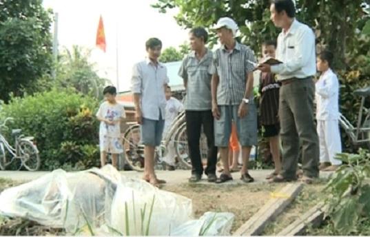 Dân Vĩnh Long bất ngờ phát hiện xác cá heo trôi ngược vào sông - H2