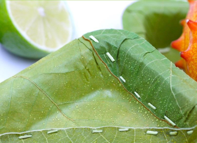 Chúng 100% là tự nhiên: cả ba lớp của chiếc dĩa đều làm hoàn toàn bằng những chiếc lá lớn sau đó được khâu lại với nhau bằng sợi lá cọ.