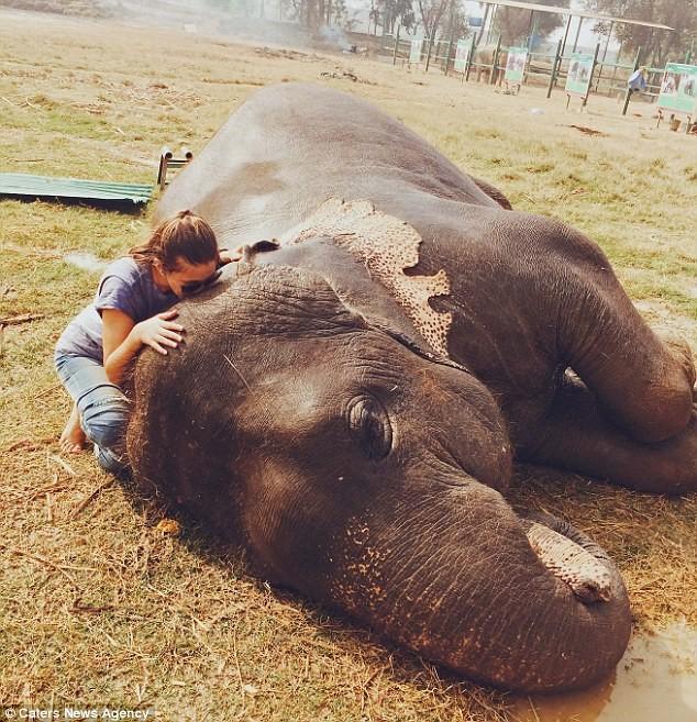 Daniela Moreno bày tỏ tình yêu với một chú voi ở khu bảo tồn động vật Ấn Độ.
