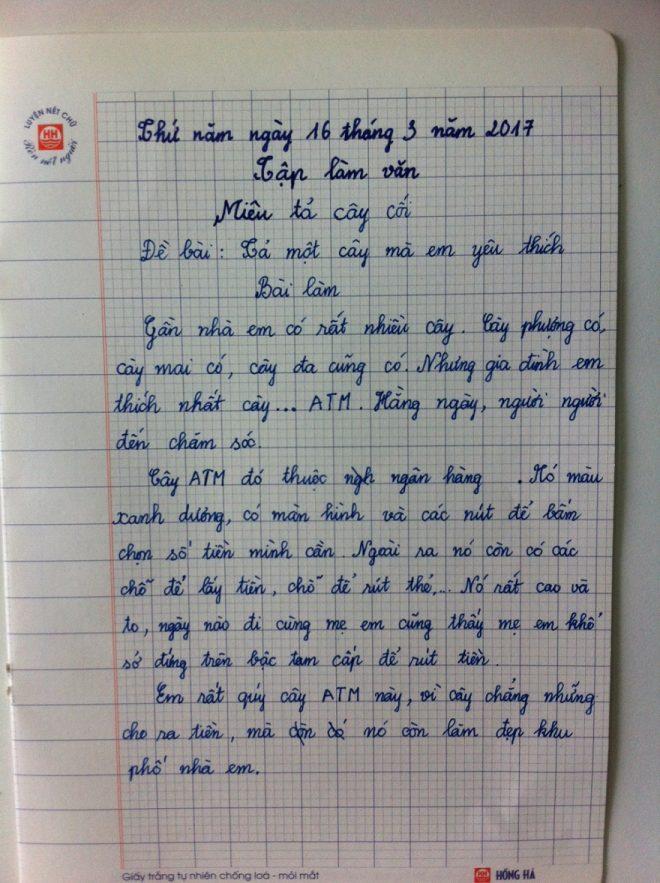Đề bài: 'Tả 1 cây mà em yêu thích', học trò chọn cây này khiến cô giáo 'đứng hình'.2