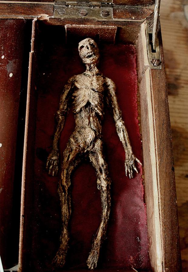 Chàng trai chia sẻ bộ sưu tập xác tiên, người sói được tìm thấy ở Anh. 1