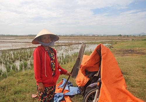Chiếc xe máy hư hỏng cùng tấm bạt che rách nát ở cánh đồng Bàu Miêu, phường An Hòa.