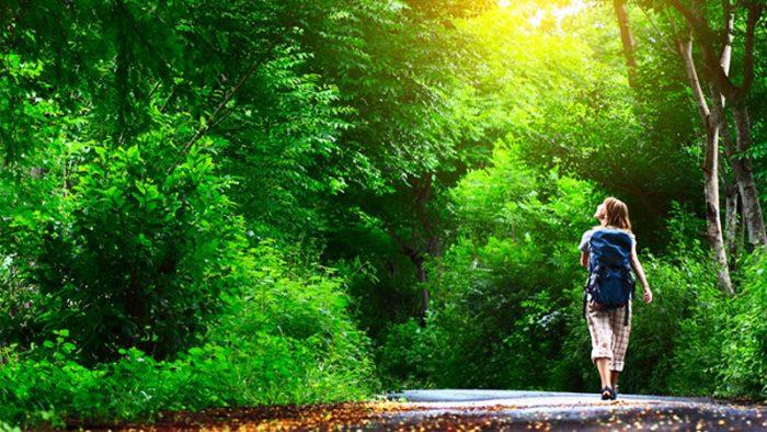 Cuộc sống là những cơ hội ngẫu nhiên, lựa chọn thế nào lại là của riêng mình.1