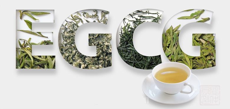 EGCG, tea's most powerful antioxidant