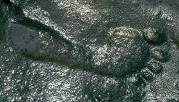 Dấu chân người khổng lồ được tìm thấy ở New Mexico .