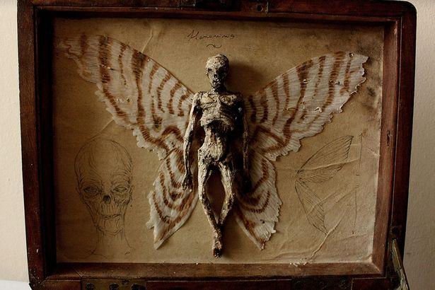 Chàng trai chia sẻ bộ sưu tập xác tiên, người sói được tìm thấy ở Anh. 3