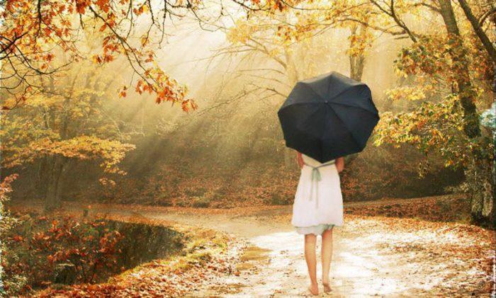 Nỗi đau cũng sẽ lớn thêm, như cái cây càng lớn thì càng phải hứng chịu những đợt gió mạnh hơn'. (Ảnh: )