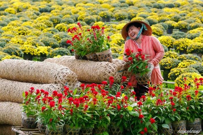 Du xuân dọc 3 miền đất nước ngắm muôn hoa khai nở.2