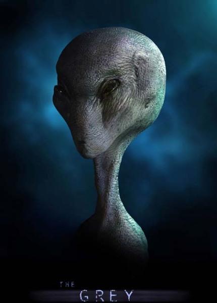 Hình dạng và nhiệm vụ của 5 chủng người ngoài hành tinh từng ghé Trái đất - ảnh 3