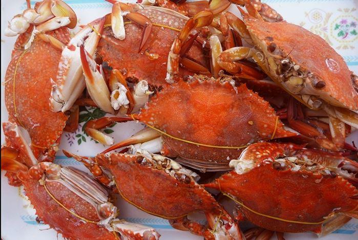 Ghẹ là đặc sản ngon nhất của vùng biển Hàm Ninh