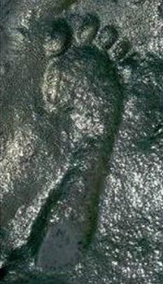 Bí ẩn dấu chân người 290 triệu năm tuổi khoa học chưa lý giải được - ảnh 1