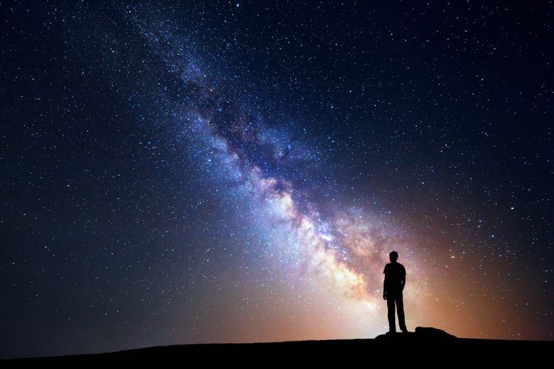 Trong vũ trụ mênh mông này, con người vô cùng nhỏ bé (P.1): Nếu một ngày nhân loại biến mất - ảnh 1