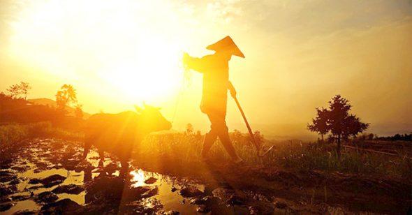 Từ 3 điều ước của lão nông dân, nhìn thấu tâm đố kỵ của con người