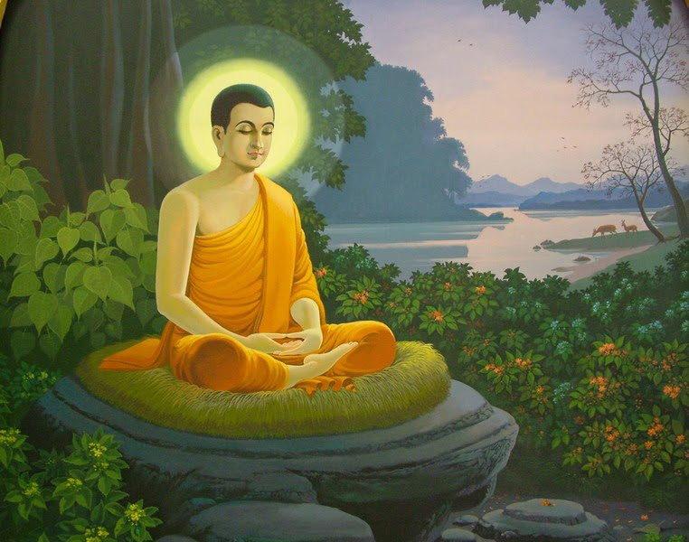 Truyện cổ Phật gia: Nỗi thương xót của Đức Phật Thích Ca