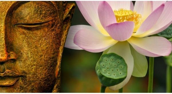 Có người hỏi Phật Thích Ca Mâu Ni là ai, ngài đáp lại rằng…