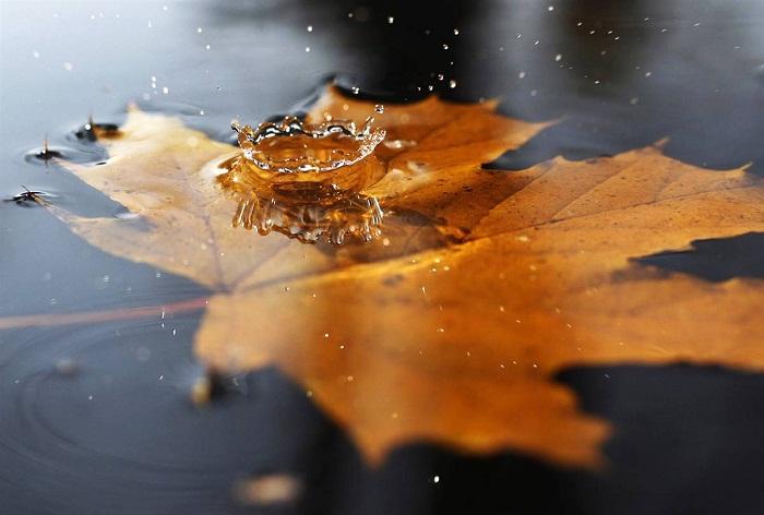 Nước đổ khó hốt, có 7 loại lời không nên tùy tiện nói - ảnh 1