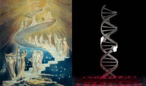 Sự tương đồng ngẫu nhiên giữa chiếc thang lên Trời trong Thánh Kinh và chuỗi xoắn kép DNA