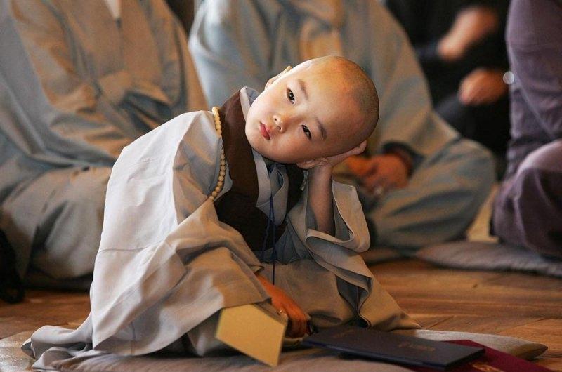 Học cách người xưa đối diện với thị phi trong cuộc sống