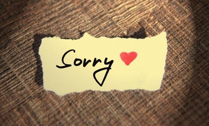 Một lời xin lỗi chân thành vì sao lại khó nói đến như vậy?. Ảnh 1