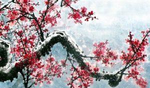 Bậc quân tử như hoa mai trong tuyết lạnh, như tùng bách xanh tốt quanh năm