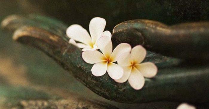 Người thông linh giải bày chuyện nhân quả: Nợ gì hoàn nấy, tha thứ sẽ tốt hơn - ảnh 2