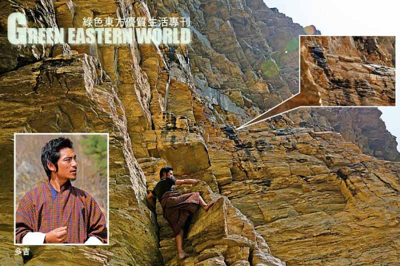 Hỉ lai chi - Linh dược nơi đất Phật Bhutan để cứu chúng sinh trong thời mạt pháp - ảnh 3