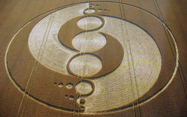 Những vòng tròn bí ẩn trên cánh đồng: Tuyệt tác của người ngoài hành tinh? - ảnh 1