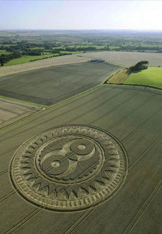Những vòng tròn bí ẩn trên cánh đồng: Tuyệt tác của người ngoài hành tinh? - ảnh 11