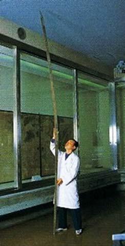 Chủ nhân của thanh kiếm Norimitsu Odachi dài gần 4m ở Nhật là người khổng lồ? - ảnh 3