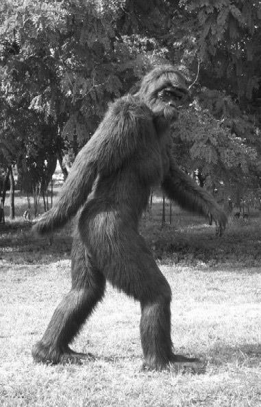 10 hiện tượng kỳ bí không thể giải thích bằng khoa học - Bigfoot