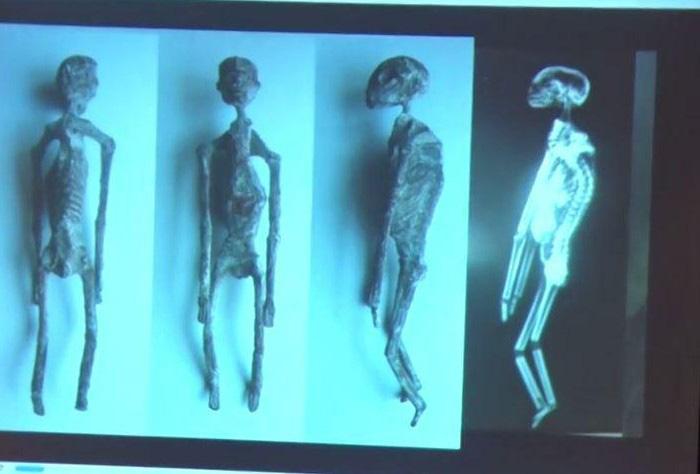 Tìm thấy 5 xác ướp người ngoài hành tinh gần kỳ quan bí ẩn ở Peru - ảnh 2
