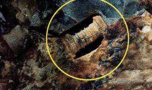 Đinh vít 300 triệu năm tuổi ở Nga, hóa thạch cổ đại hay dấu vết người ngoài hành tinh?