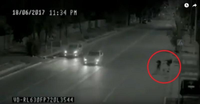 Video: Cô bé thoát chết kỳ diệu trước đầu xe hơi nhờ một 'Superman' - ảnh 2