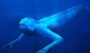 Bí ẩn chưa có lời giải về quái vật biển khổng lồ hình người ở Nam Cực