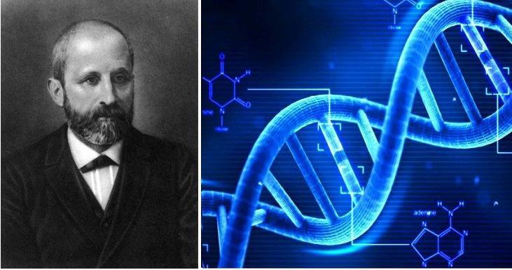 Bí ẩn mật mã DNA của con người: Ai đã lập trình nó? - ảnh 1