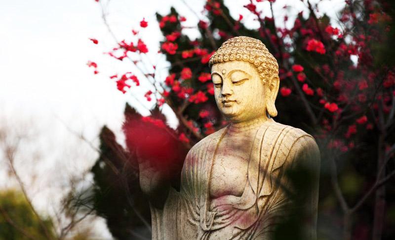 Nghiệp lực của ai người đó phải hoàn trả, dù đệ tử Đức Phật cũng không thay đổi được