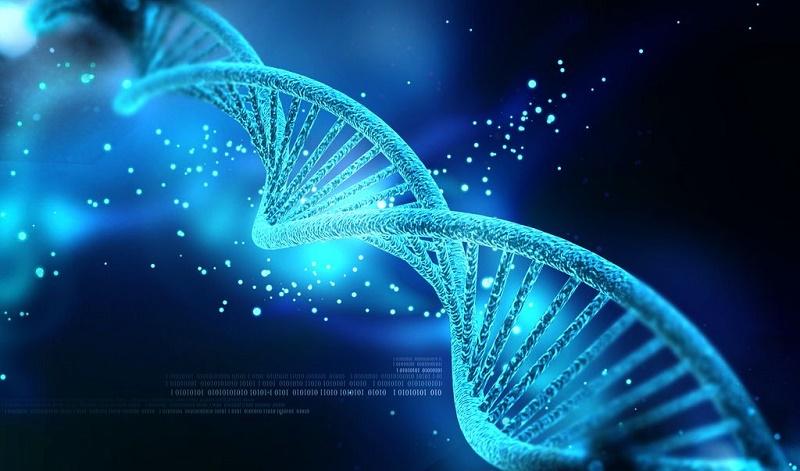 Để tạo ra những sản phẩm phức tạp và tinh vi như DNA cần phải có sự can thiệp của sinh mệnh có trí huệ cao siêu... (Ảnh qua Wrytin)