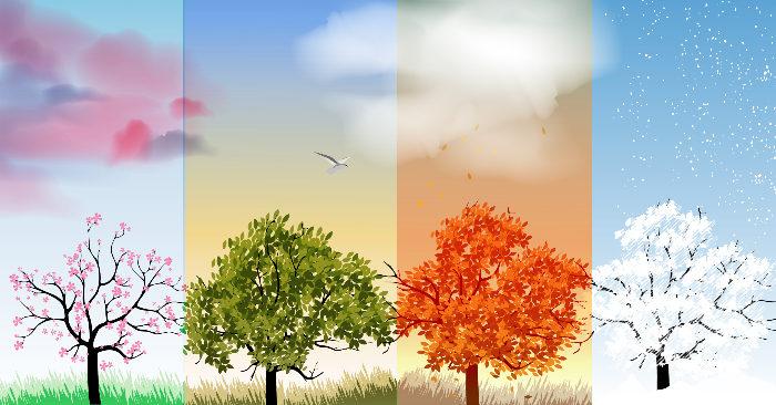 Bốn mùa phản ánh quy luật nhân sinh và vũ trụ - ảnh 1