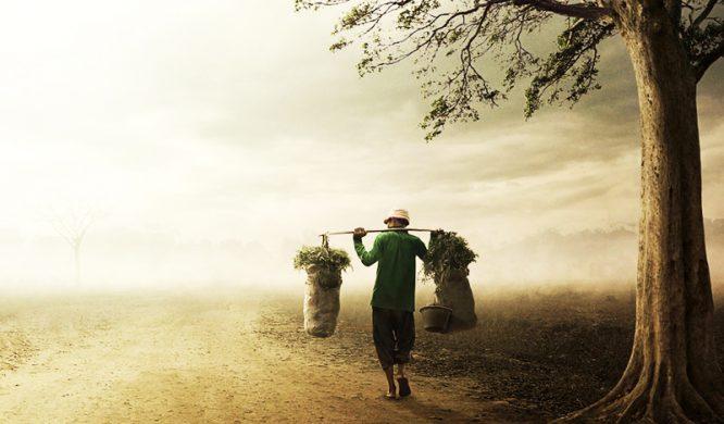 Anh nông dân học phú hộ làm giàu, tuy đạt được mục đích nhưng lại hối hận cả đời - H1